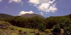 Parco Nazionale del Vesuvio (© Redaktion - Portanapoli.com)