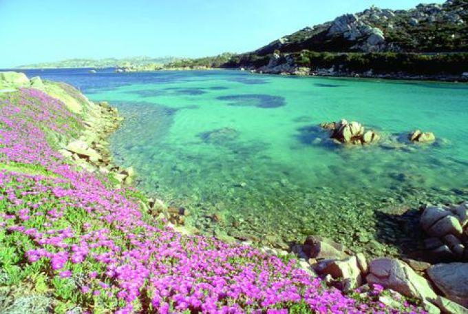 Nationalpark La Maddalena, Sardinien (© Vito Arcomano - Fototeca ENIT)