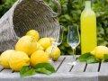 Limoncello kann man auch selbst aus Zitronen machen (© Gudrun - Fotolia.com)